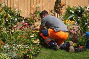 Paysagiste Lanester : entretien de jardin